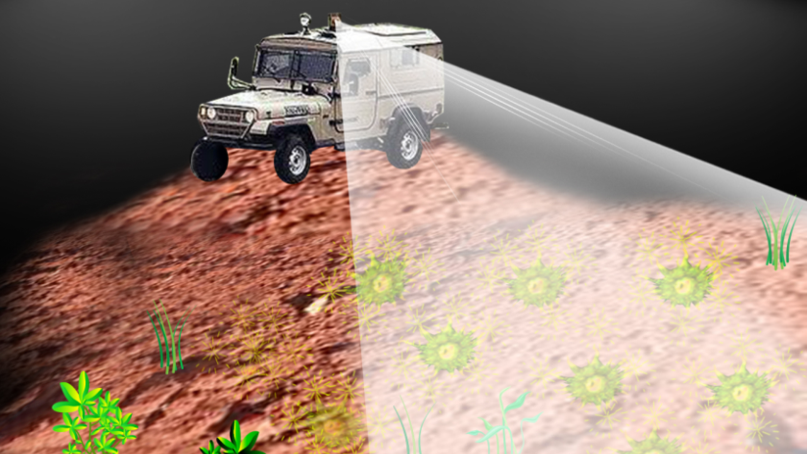 Possible application of a system to detect buried landmines using a bacterial sensor. Image courtesy of Hebrew University