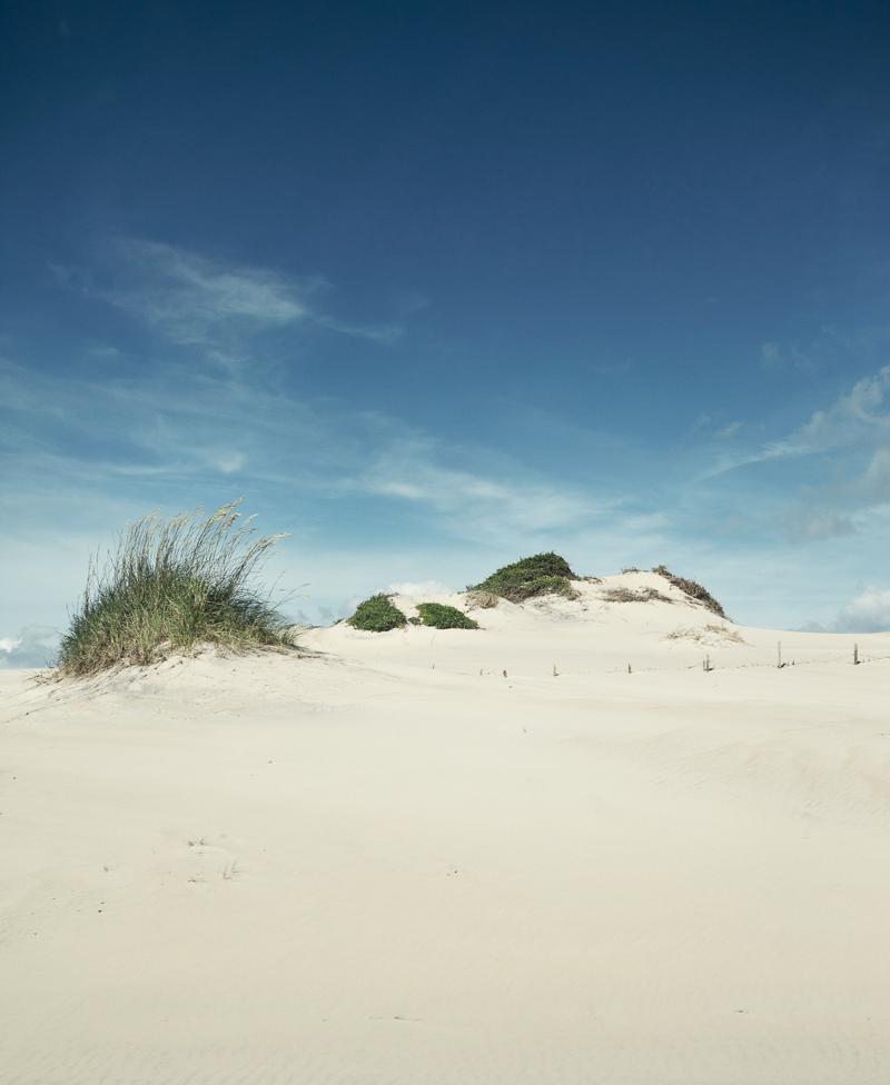 305_dunes.JPG