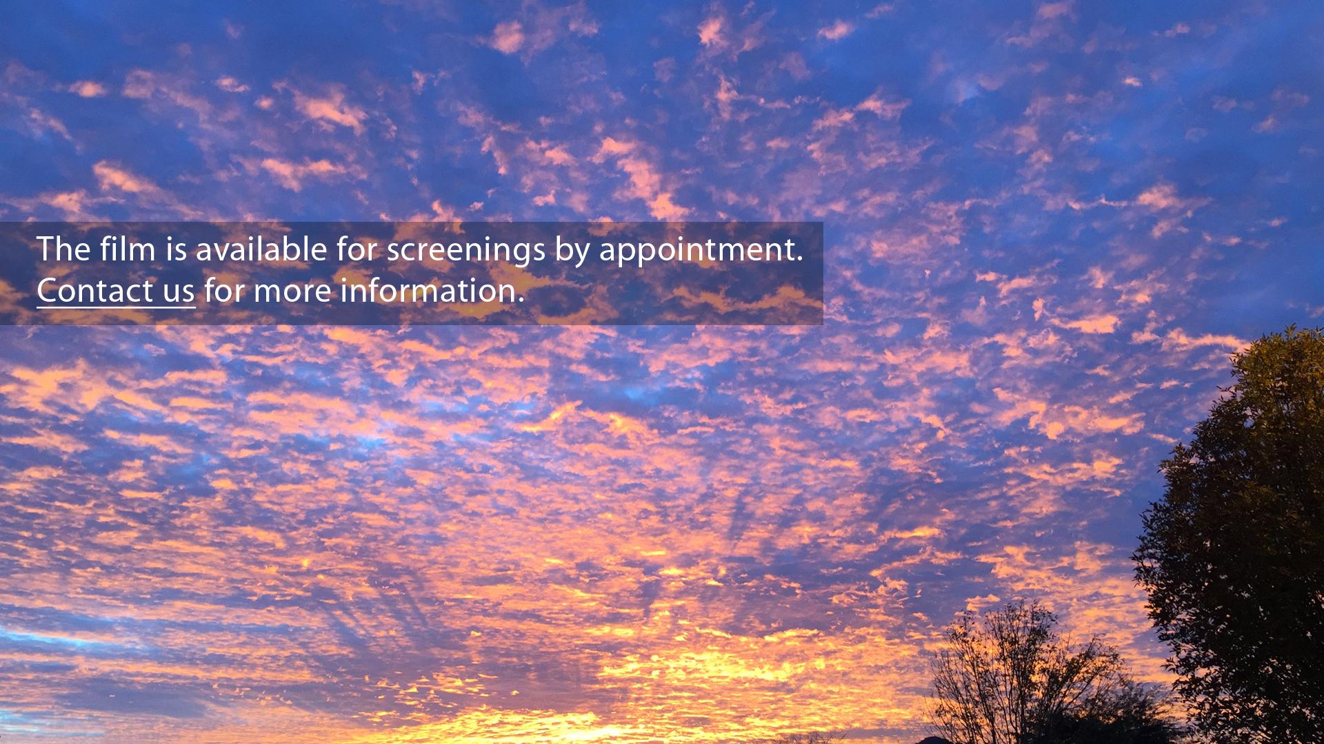 5 sunset.jpg