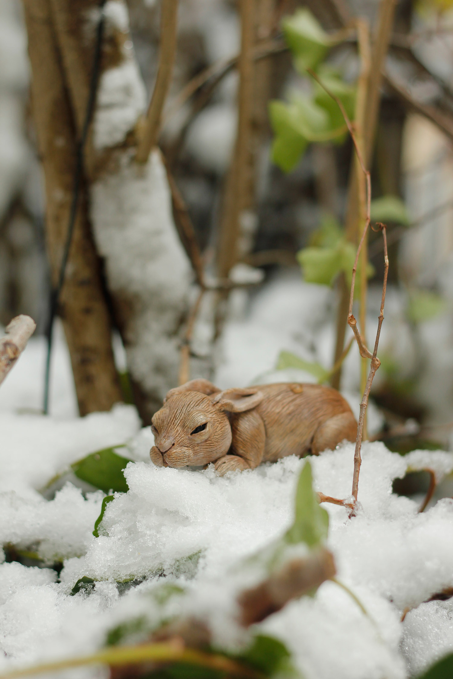 bunny-doll-snow panopoulos.jpg