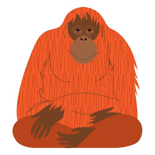 Orangutan <br> Denver Zoo