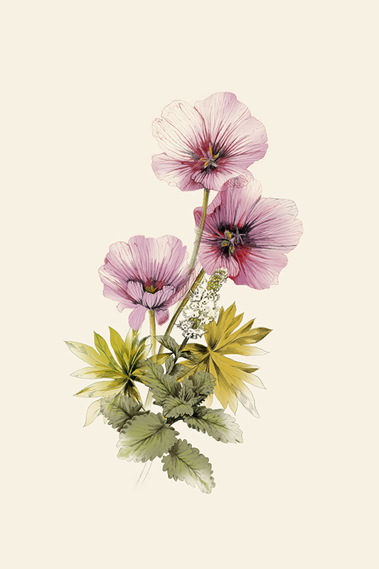 Geranium Garden Mint <br>