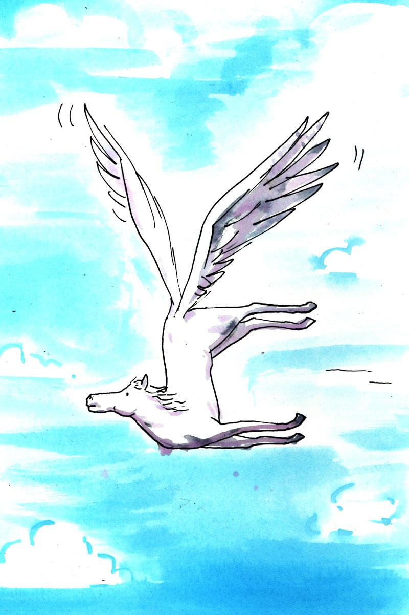 Poorly Designed Pegasus