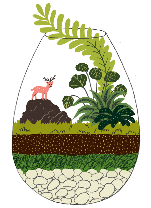 DIY Terrariums <br> Family Circle Magazine