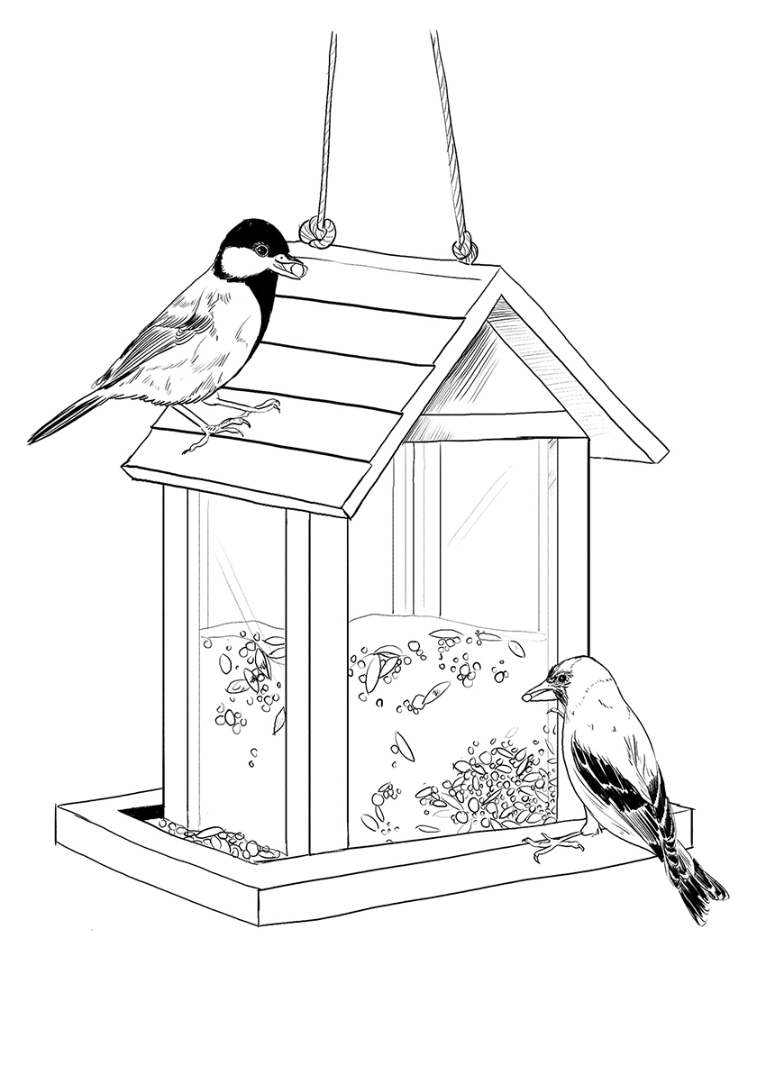 Bird Feeder <br> Seasons Magazine