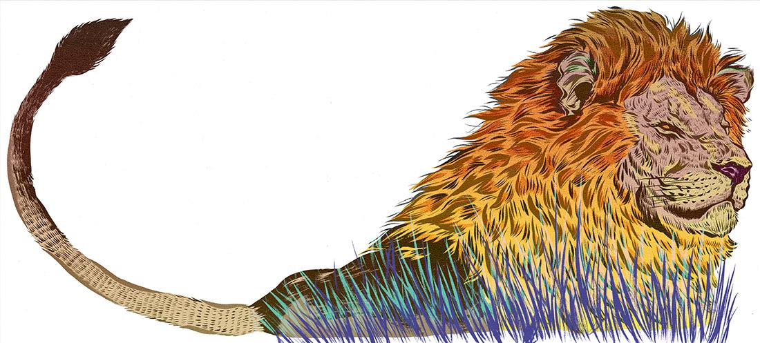 AI 33 2014 - ARTIST: Jungyeon RohTITLE: LionsCLIENT: Smithsonian Magazine