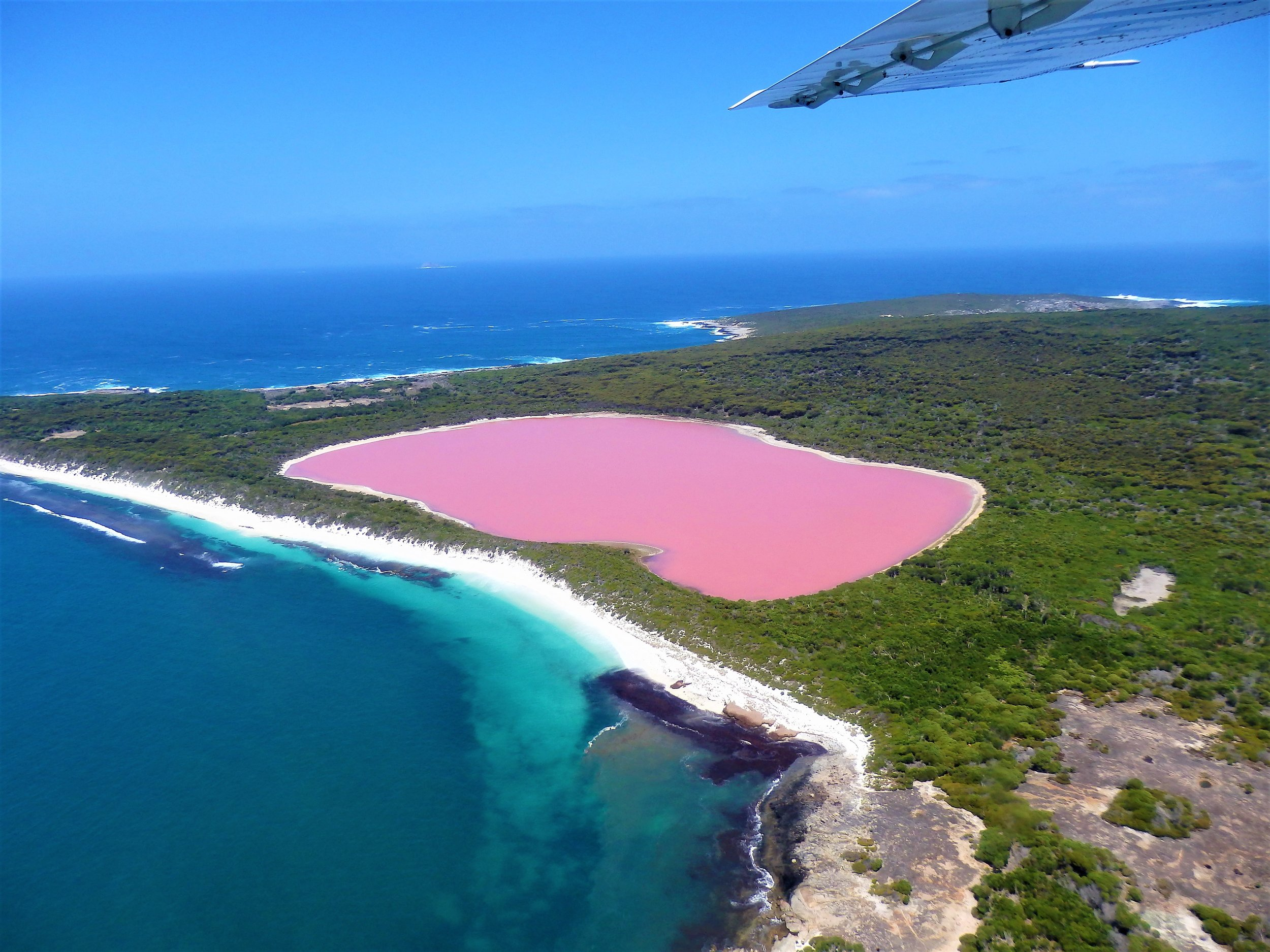 Lake Hillier-Middle Island Flight - See the magnificently pink Lake Hillier, on Middle Island, flying via Cape Le Grand National Park including the turquoise water and bright white sands of Lucky Bay and the Recherche ArchipelagoCLICK HERE for more info.