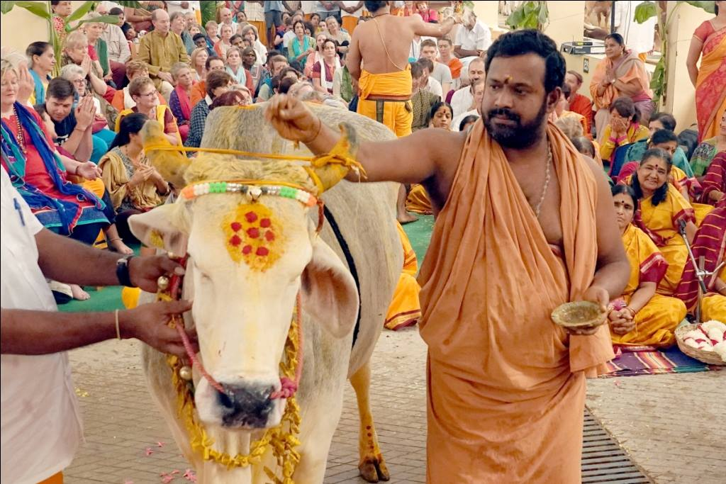 Gho (cow) puja