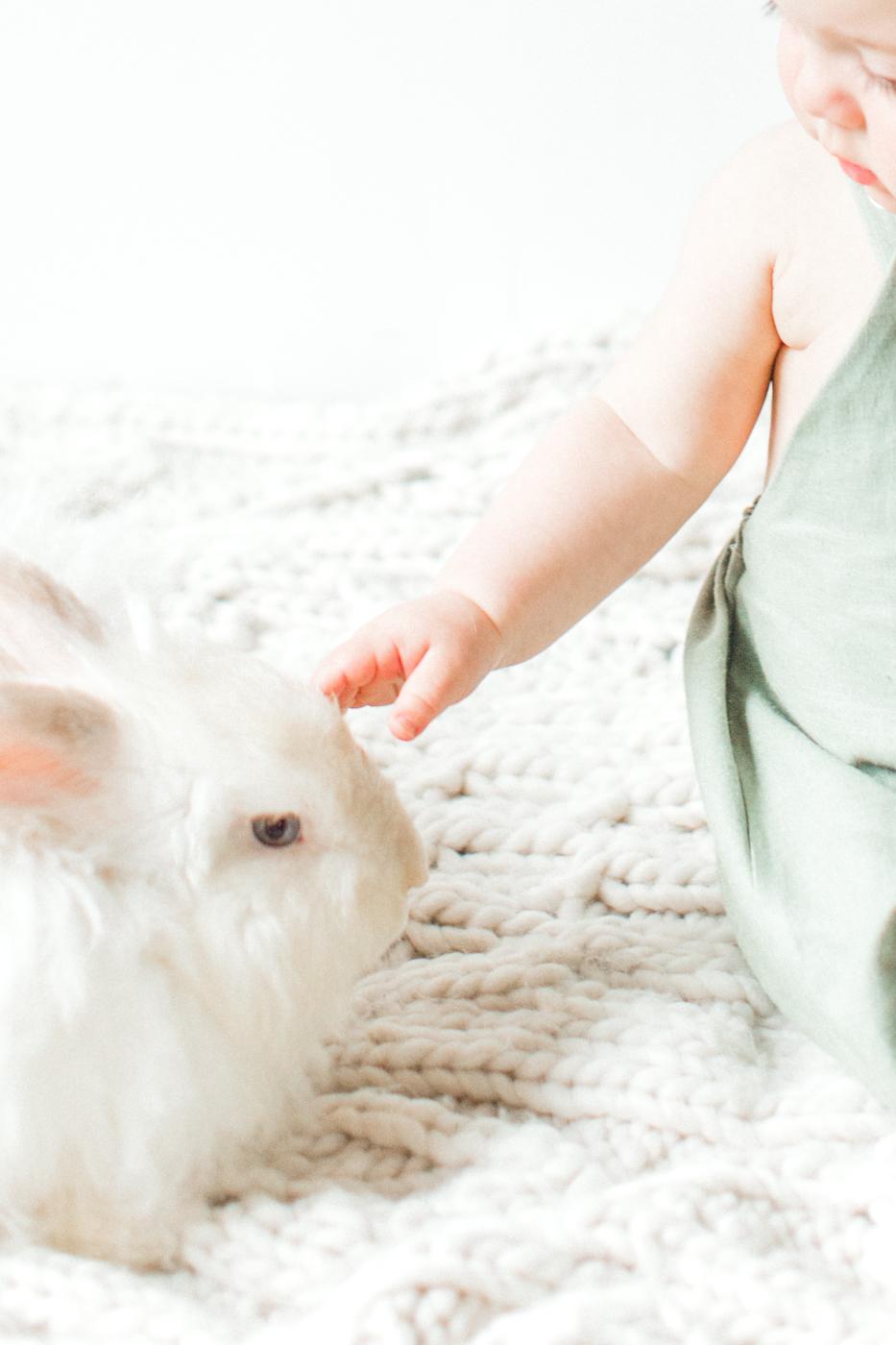 four corners photography bunny blog-16.jpg