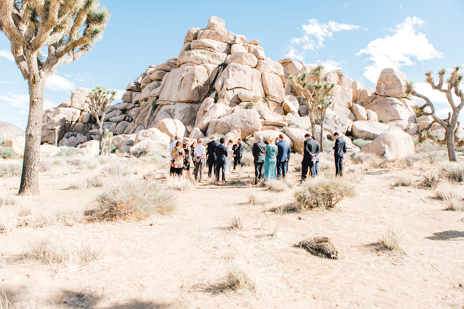 four corners photography highlights libby and cary (80 of 225)best atlanta wedding photographer joshua tree wedding atlanta wedding.jpg