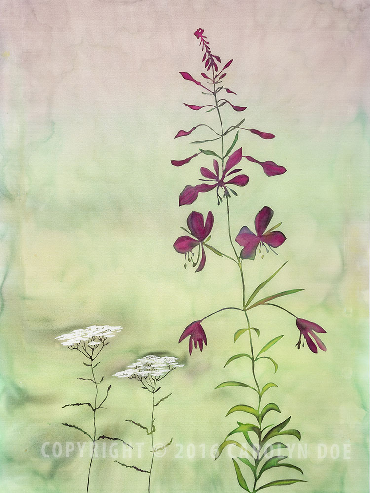 Fireweed Summer I