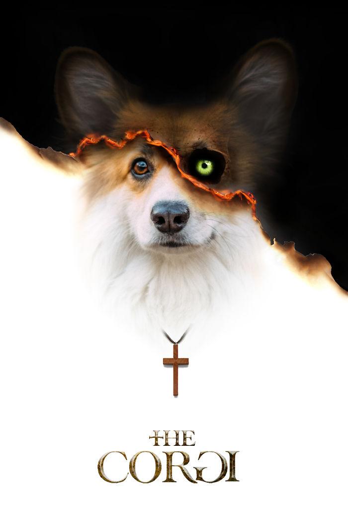 corgi-movie-posters-photoshop-5c73c8c219ae9__700.jpg