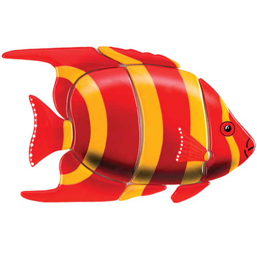Angelfish (Red)