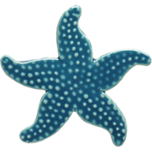 "5"" Light Blue Starfish"