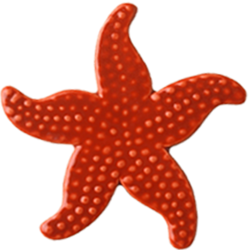 "5"" Sunset Starfish"