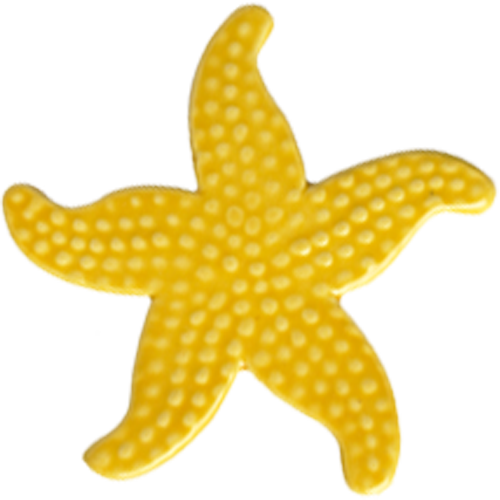 "5"" Yellow Starfish"