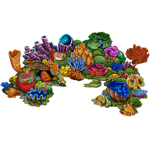 Coral Reef A