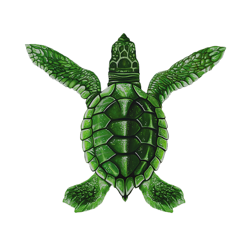 Baby Turtle A - Green