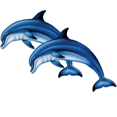 Double Bottlenose Dolphin A