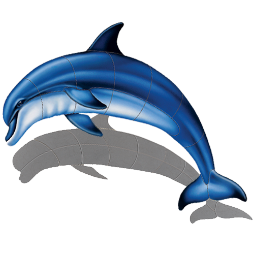 Bottlenose Dolphin A w/sh