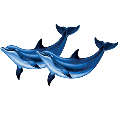 Double Bottlenose Dolphin B