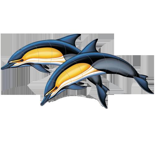 Common Dolphin Double