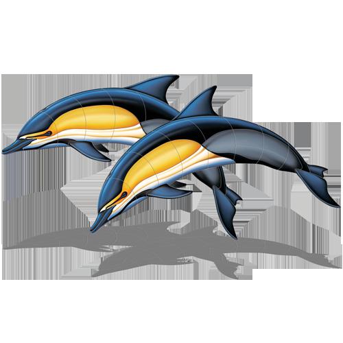Common Dolphin Double w/sh