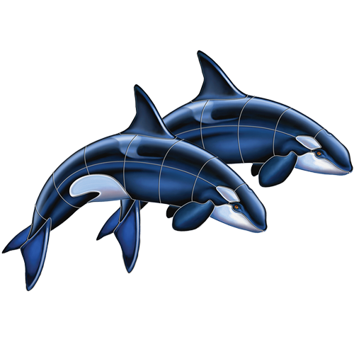 Orca Double