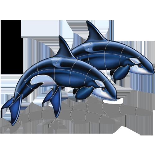 Orca Double w/sh