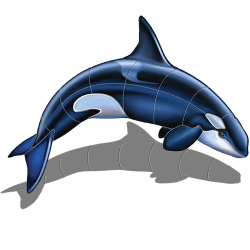 Orca A w/sh