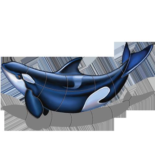 Orca B w/sh