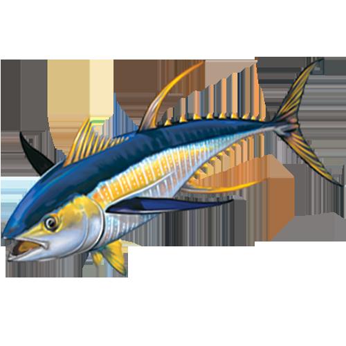 Tuna Reverse