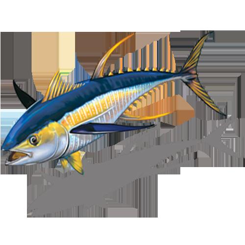 Tuna Reverse w/sh