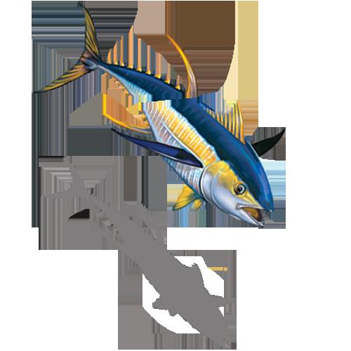 Tuna with Split w/sh