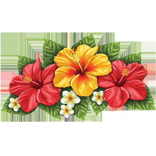 Hibiscus Flower (Triple)