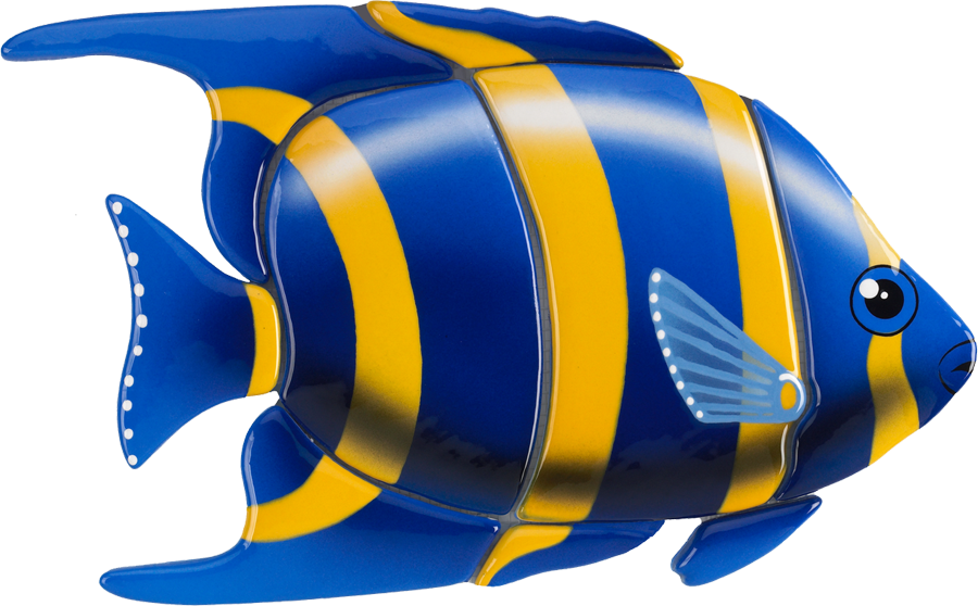 A56  Angelfish-Blue.png