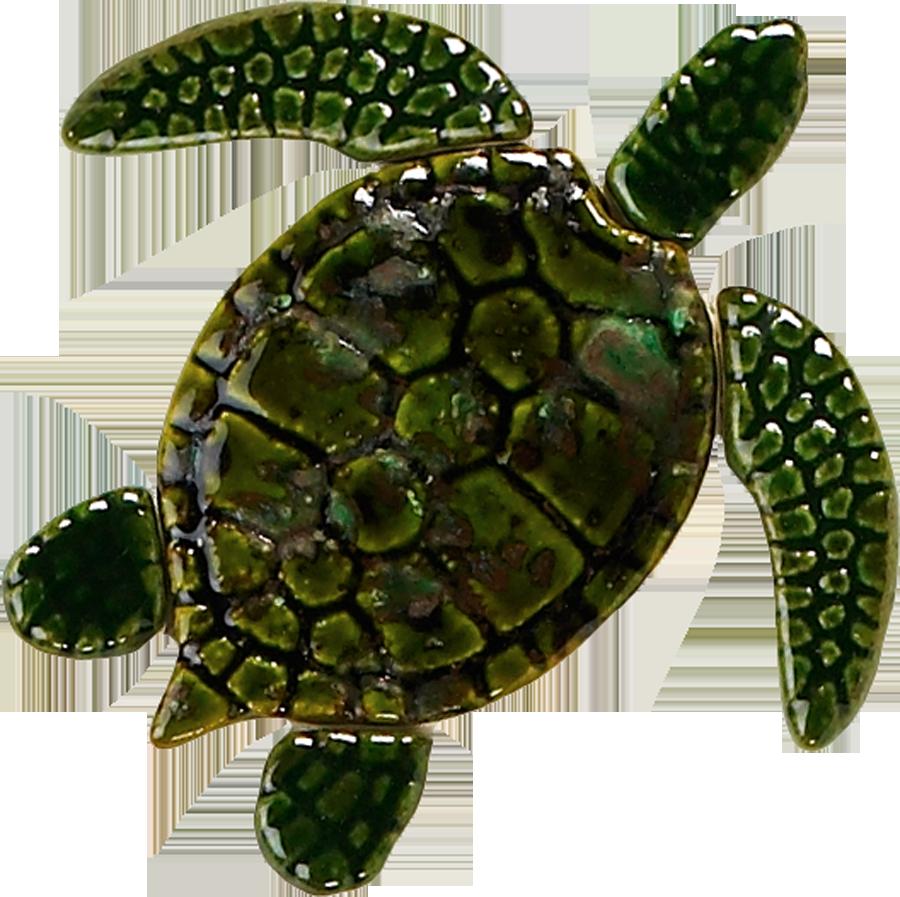 GT7-5  5in. Green Sea Turtle copy.png