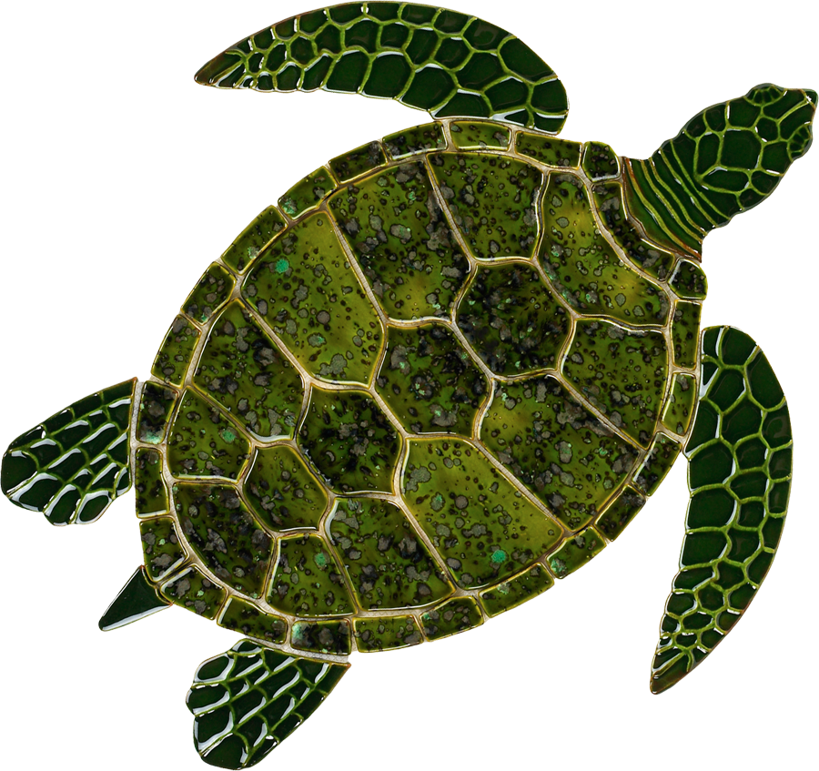 GT7  Green Sea Turtle copy.png