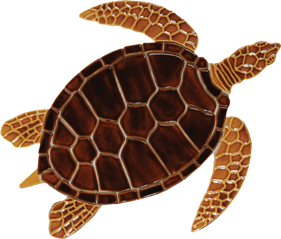 GT7B  Brown Sea Turtle copy.png