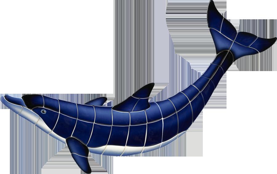 BD43  Blue Dolphin-B copy.png