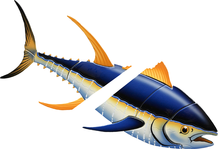 YT72  Yellowfin Tuna Down w-split copy.png