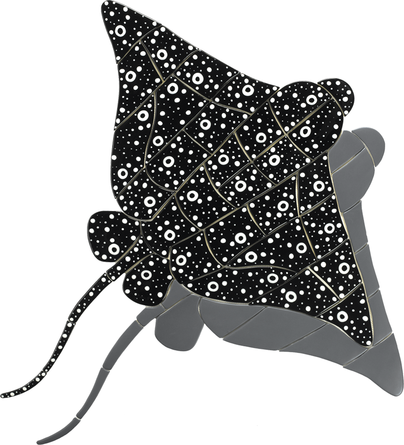 ER24-36-SH  36in Eagle Ray (with shadow).png