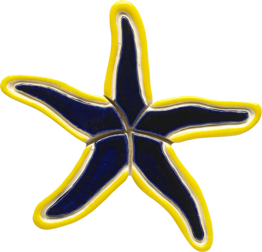 BY37  Blue Starfish1 copy.png