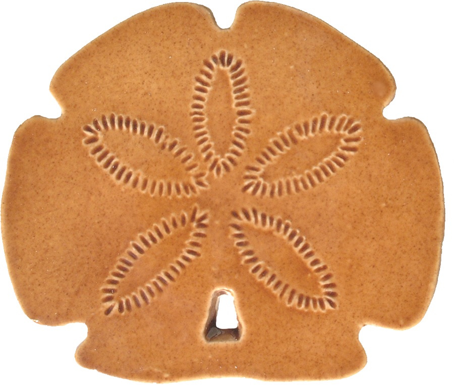SD26  Sand dollar.png