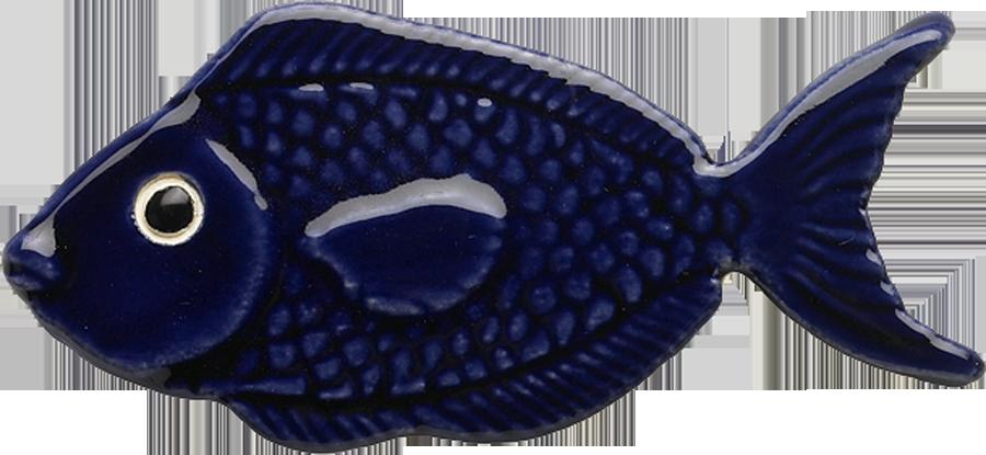 101RB Royal Blue Fish copy.png