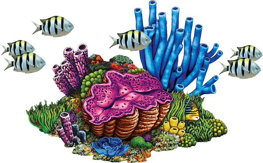 PORC-CR78  Coral Reef with Fish copy.png