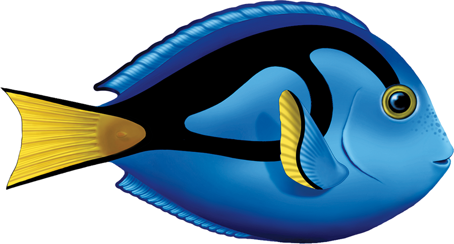 PORC-TA80  Blue Tang copy.png