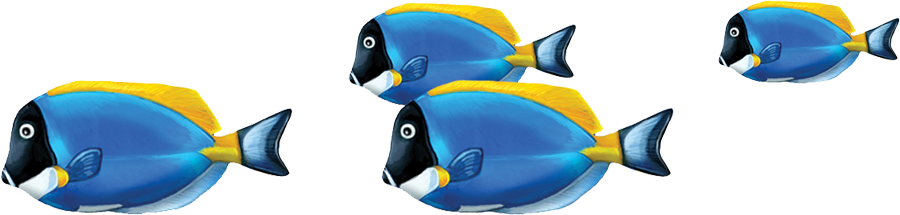 Powder Blue Tang Group copy.png
