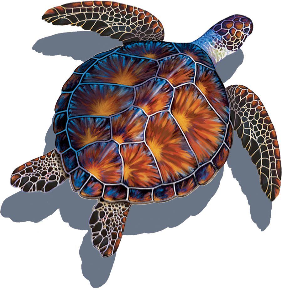 PORC-BT10-SH  Brown Turtle (with shadow) copy.png