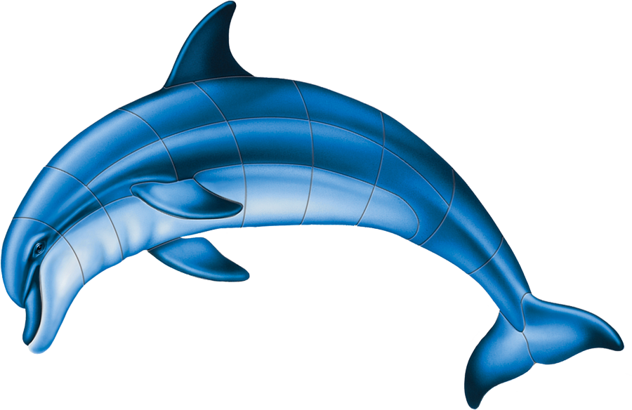 PORC-BD1 Bottlenose Dolphin-A.png